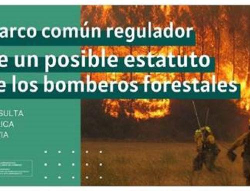 Encuesta para un estatuto general para todos los bomberos forestales del territorio español