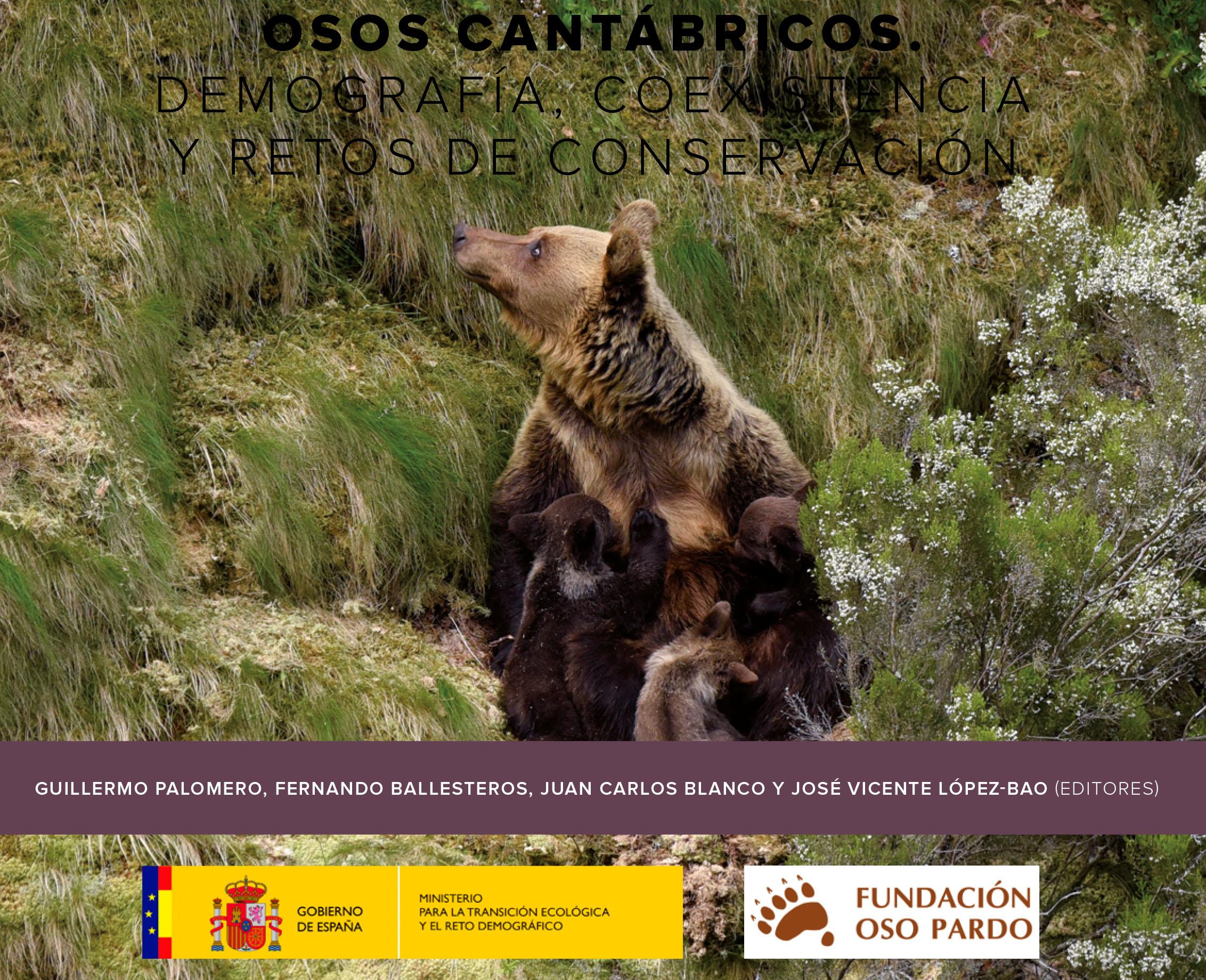 Nueva publicación sobre los osos cantábricos